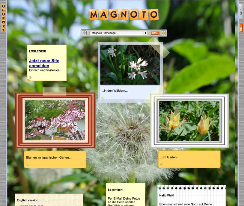 Magnoto Website